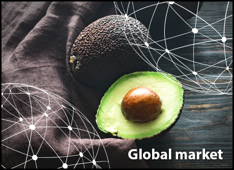 OVERVIEW GLOBAL AVOCADO MARKET