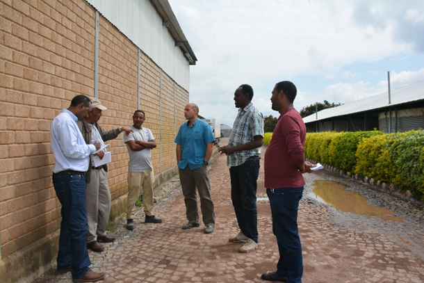 Ecology Corner: Wetland Construction Progress: Florensis Ethiopia Plc