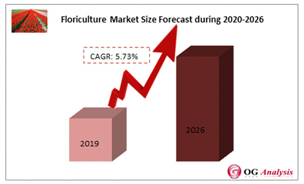 Floriculture Market is anticipated to expand at a promising CAGR of 5.73% during 2020 – 2026 | OGAnalysis