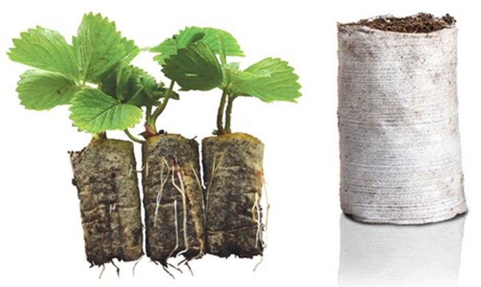 Ellepot introducing new paper for organic production