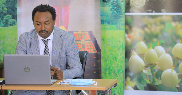 Attracting investment to the horticulture sector in Ethiopia