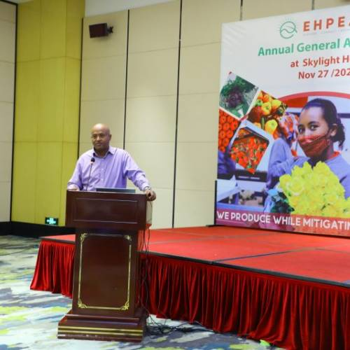 The Annual General Assembly of EHPEA held Nov, 27/2020 at Skylight Hotel Addis Ababa.